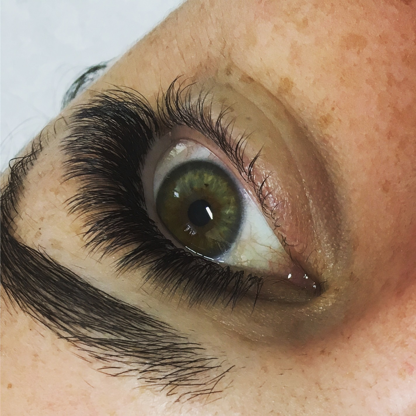 Gallery Perth Lash Boutique Eyelash Extensions Perth 0473 499